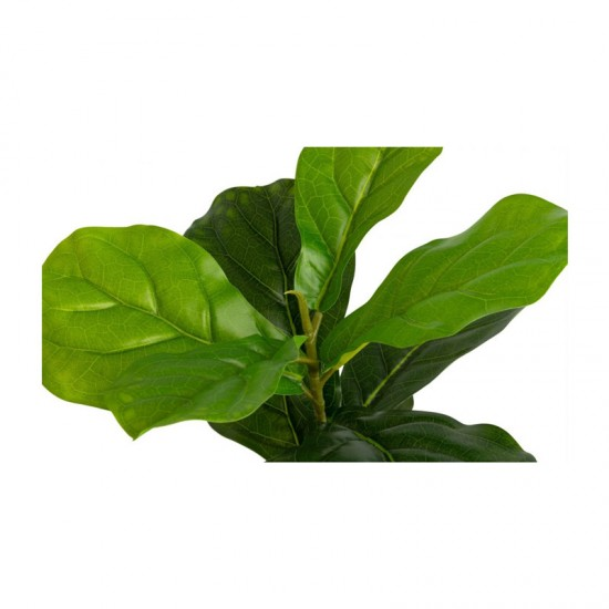 Τεχνητό Φυτό Ficus Lyrata 50 cm Inkazen 40081828